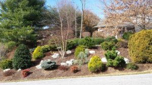Cover photo for Fall Is for Planting - Landscape Drafting Workshop