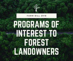 programs for forest landowners