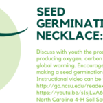 seed necklace flyer