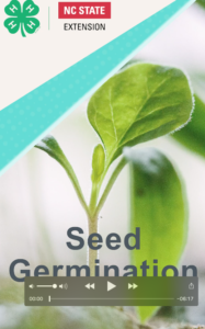 title screen for seed germination video