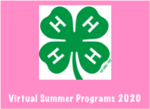Cover photo for 4-H Virtual Summer Opportunities