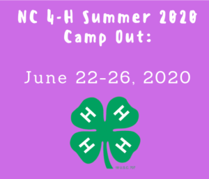 4-H summer camp 2020 logo