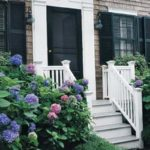 pink and blue hydrangeas beside steps