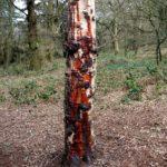 bleeder tree dripping sap