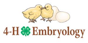 4-H Embryology