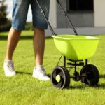 man pushing spreader across lawn