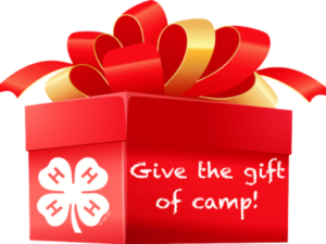 clipart of red gift box with gold and red bow and 4-H clover