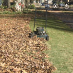 push mower in a pile of leaves