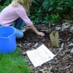 woman taking a soil sample from her lawn