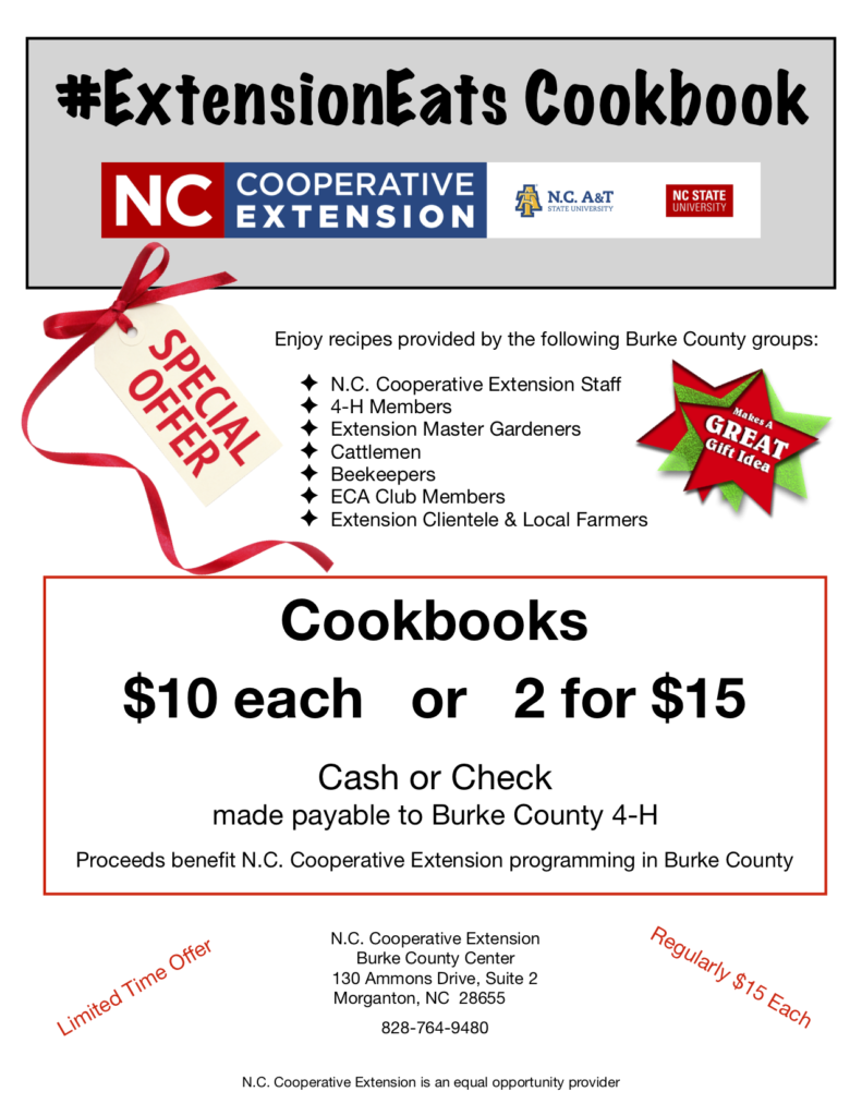 cookbook holiday special flyer