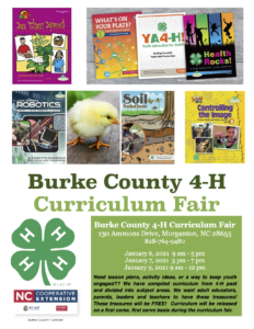 Curriculum Fair Flyer