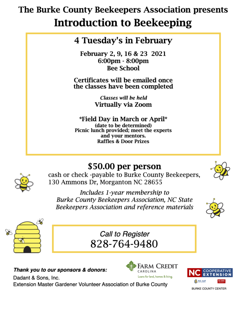 Introduction to Beekeeping Flyer