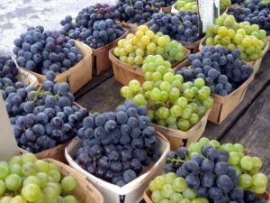 white and blue grapes in baskets