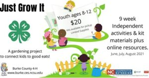 Just Grow It Workshop flyer