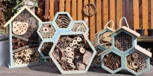 variety of bee houses